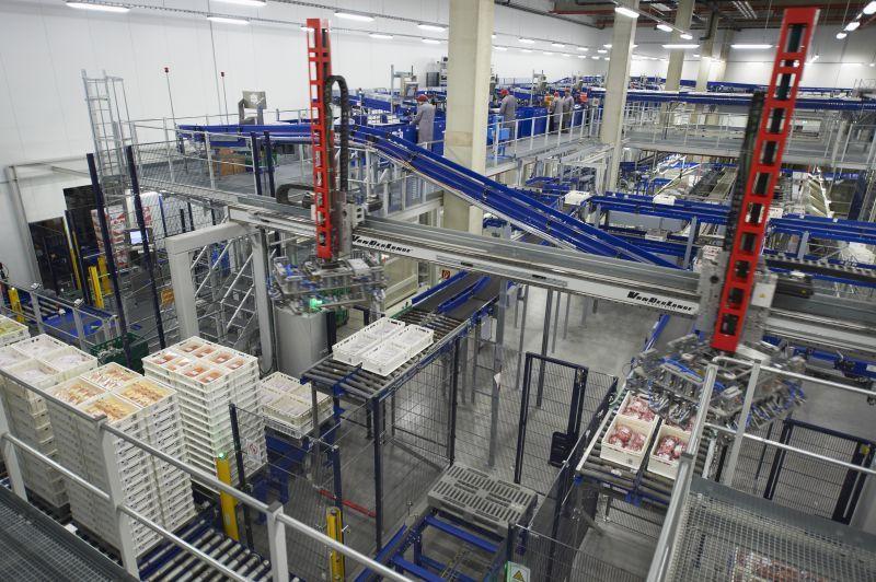 EDEKA Südwest Fleisch GmbH: Simulation Lager