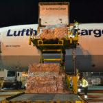 Lufthansa_Cargo_Beladung_Baldus